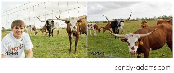 Sandy Adams Photography coleman fulcher-11