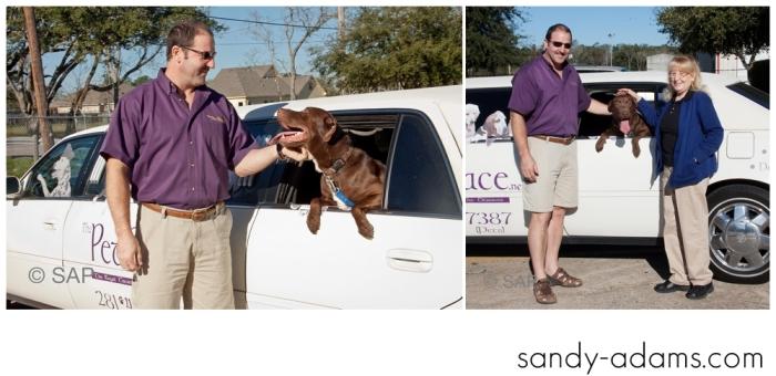 Sandy Adams Photography The Pet Palace League City Animal Shelter-7676