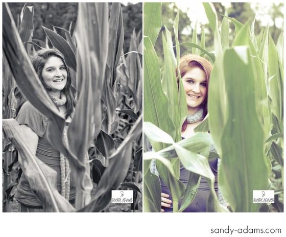 Sandy Adams Photography Katie Giles Greenfield High School Tennessee senior-20