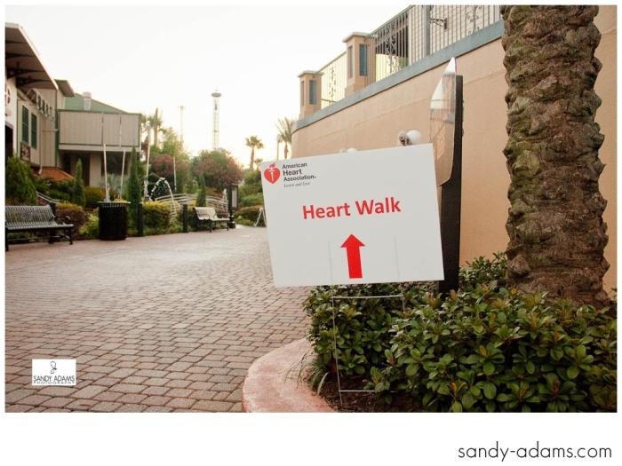 Sandy Adams Photography Bay Area Houston Heartwalk American Heart Association-0664