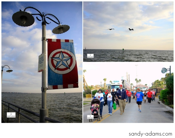 Sandy Adams Photography Bay Area Houston Heartwalk American Heart Association-0790