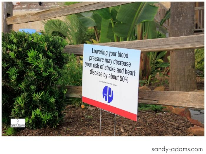 Sandy Adams Photography Bay Area Houston Heartwalk American Heart Association-0792
