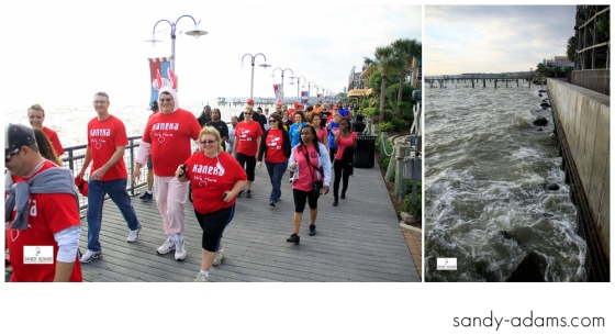 Sandy Adams Photography Bay Area Houston Heartwalk American Heart Association-1022