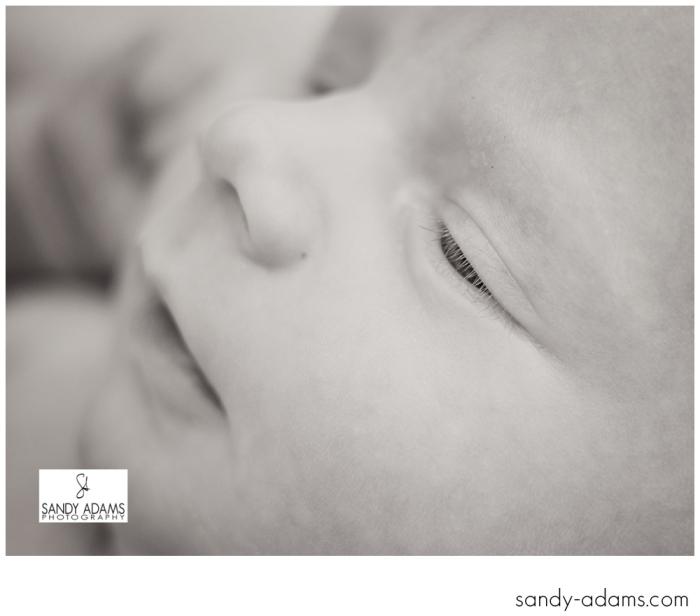 Sandy Adams Photography Houston Newborn Photographer-3