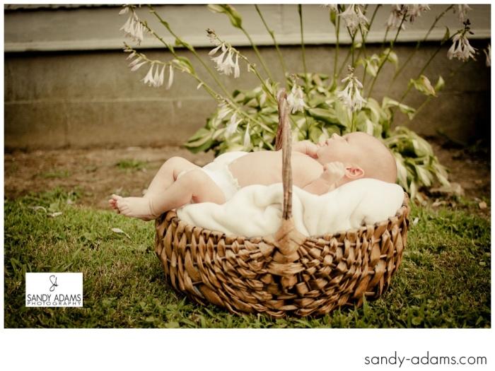 Sandy Adams Photography Houston Newborn Photographer-6