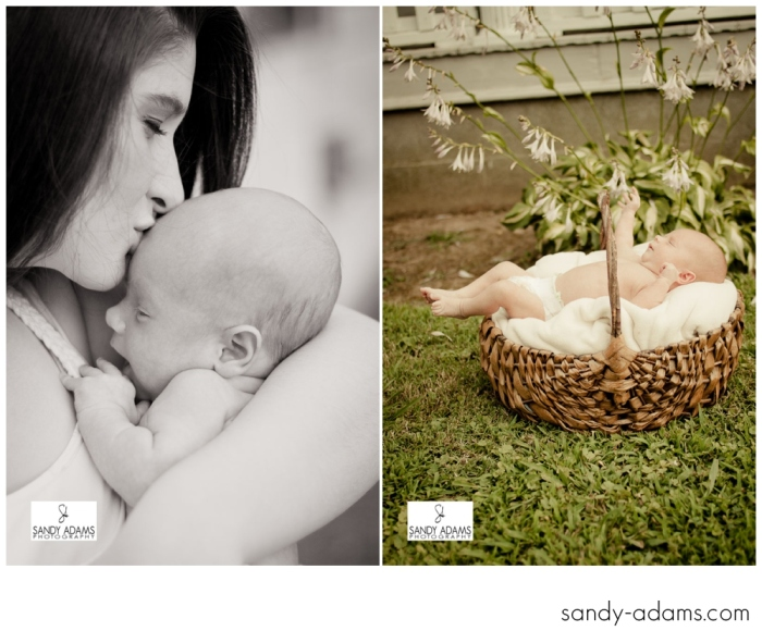 Sandy Adams Photography Houston Newborn Photographer-7