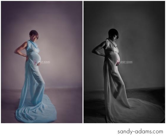 Sandy Adams Photography Houston Maternity Newborn Photographer-5