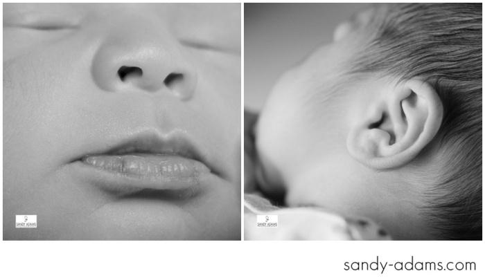 Sandy Adams Photography Houston League City Newborn Photographer-4728