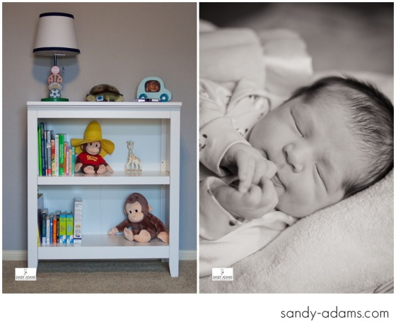 Sandy Adams Photography Houston League City Newborn Photographer-4770
