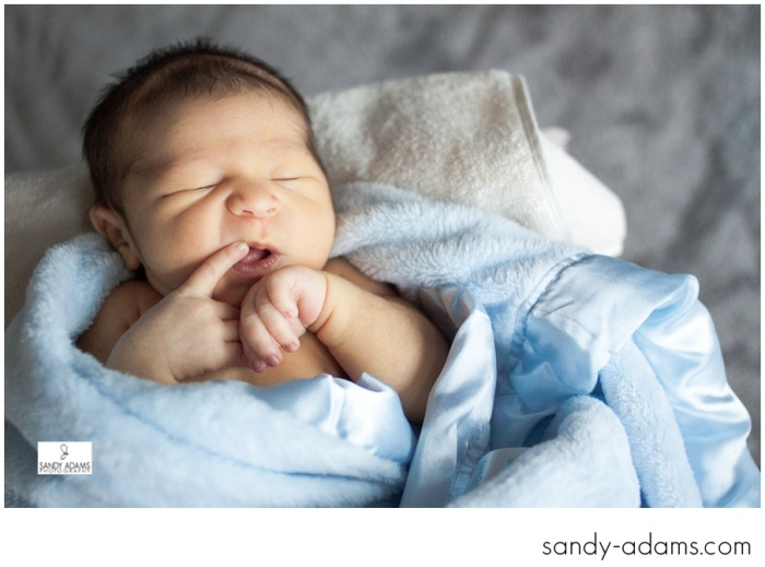 Sandy Adams Photography Houston League City Newborn Photographer-4775