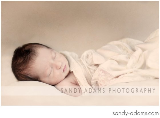 Sandy Adams Photography Houston Clear Lake Newborn photographer-20