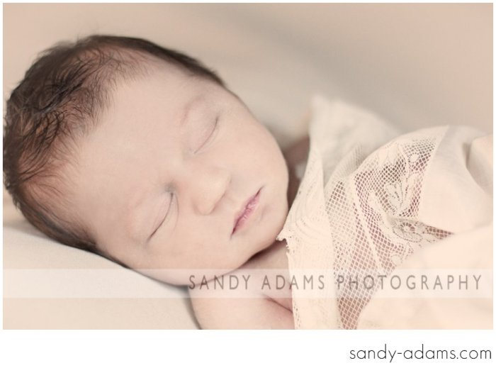 Sandy Adams Photography Houston Clear Lake Newborn photographer-21