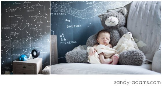 Sandy Adams Photography Houston Clear Lake Newborn photographer-32-2