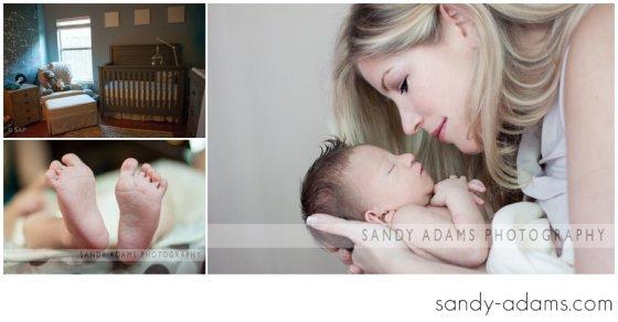 Sandy Adams Photography Houston Clear Lake Newborn photographer-33-2