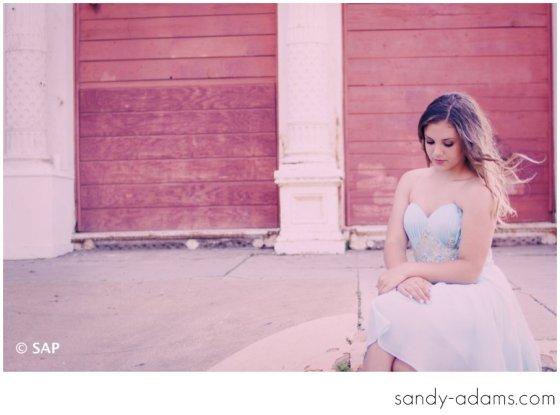 Sandy Adams Photography Lutheran South Academy Senior Photographer League City Houston Friendswood Clear Lake Cheerleader-10