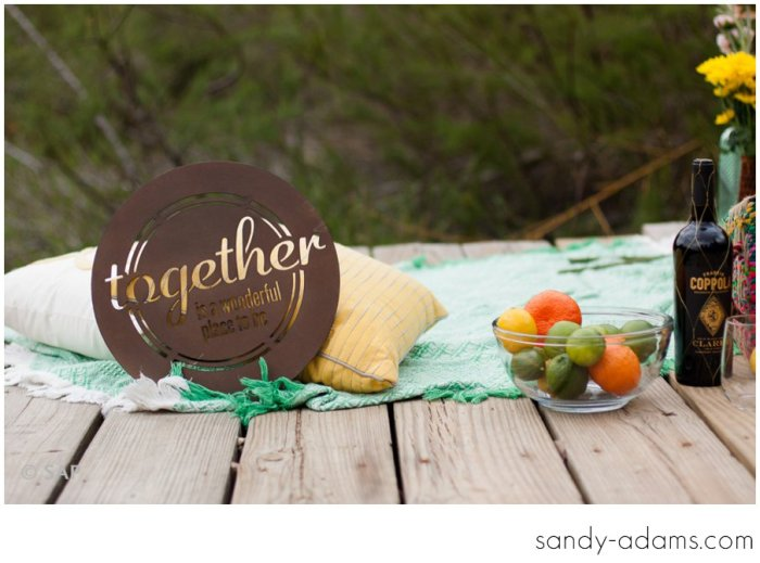 Sandy Adams Photography League City Friendswood Houston Engagement Photographer-7293