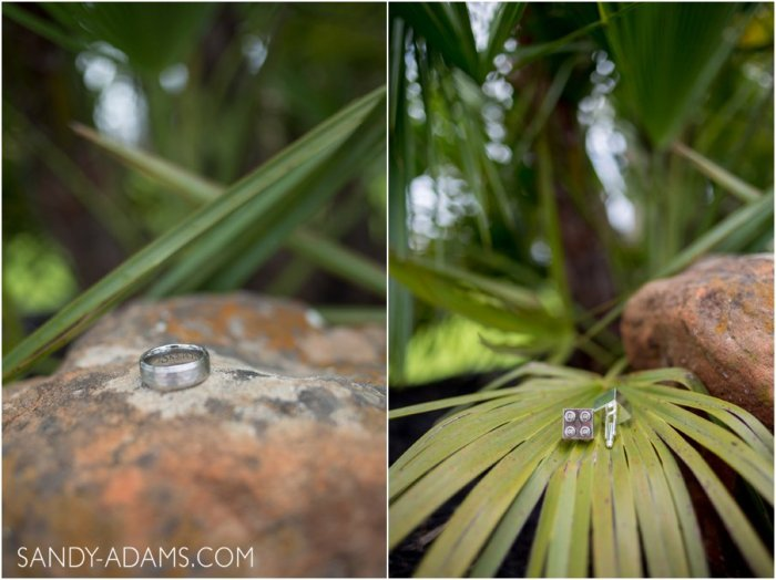 League City Friendswood Clear Lake Wedding Engagement Photographer Sandy Adams Photography-11-2