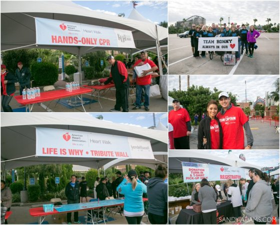 League CIty Friendswood Houston Bay Area Clear Lake Heart Walk American Heart Association Sandy Adams Photography-20