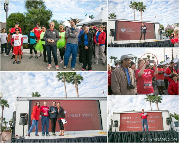 League CIty Friendswood Houston Bay Area Clear Lake Heart Walk American Heart Association Sandy Adams Photography-34