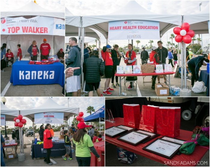 League CIty Friendswood Houston Bay Area Clear Lake Heart Walk American Heart Association Sandy Adams Photography-6