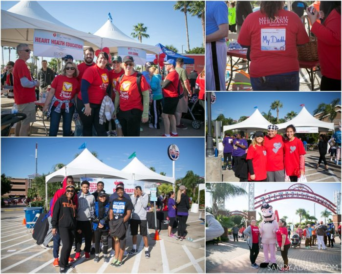 League CIty Friendswood Houston Bay Area Clear Lake Heart Walk American Heart Association Sandy Adams Photography-80