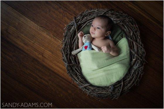 League City Seabrook Friendswood newborn maternity portrait photographer Sandy Adams Photography-16
